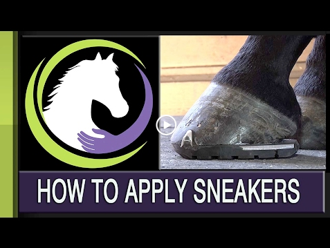 HOW TO APPLY SNEAKERS
