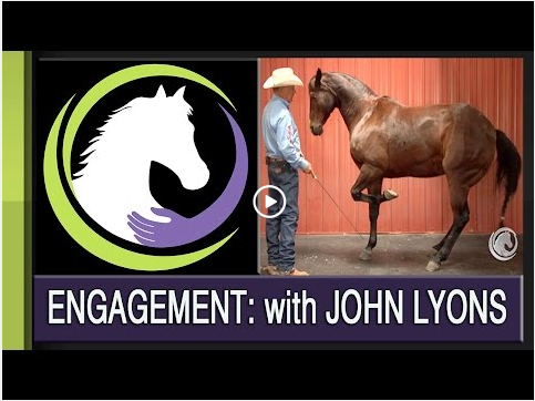 ENGAGING YOUR HORSE (FROM A WESTERN PERSPECTIVE) WITH JOHN LYONS